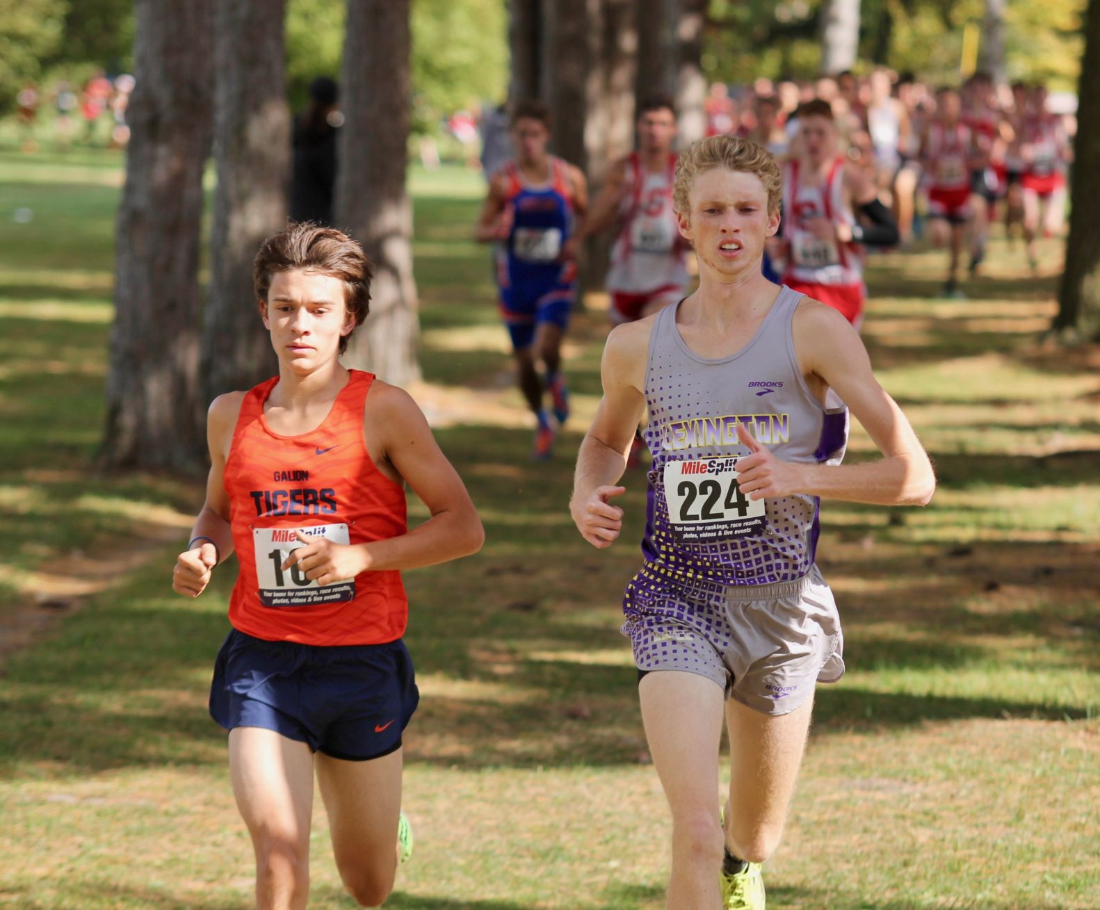 Johnston, Lex aiming for another trip to state