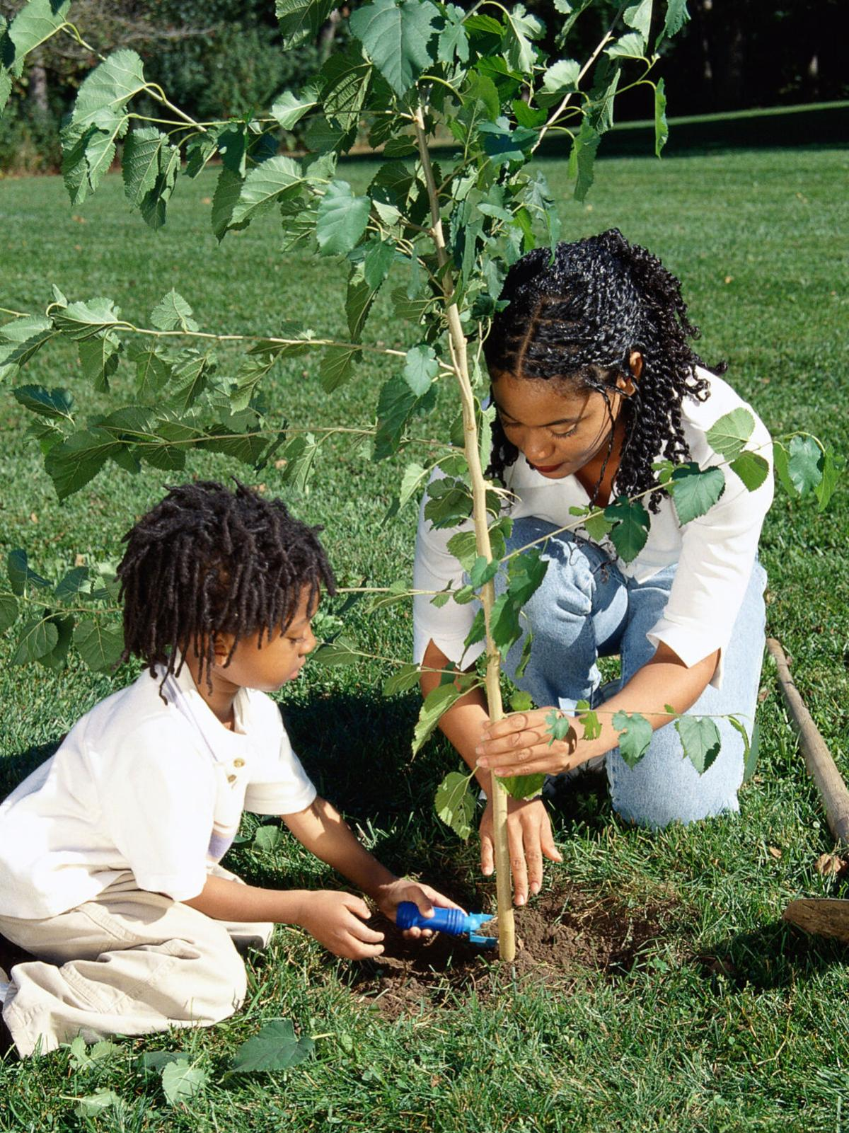 Two African-American girls planting a tree