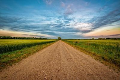 HB - The Long Road Home - Newman.jpg
