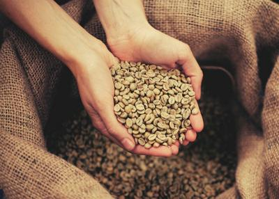 Coffee's Surprising Journey From Bean to Cup