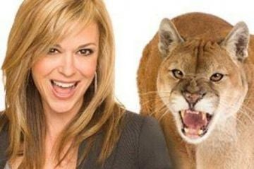 Cougar chat city