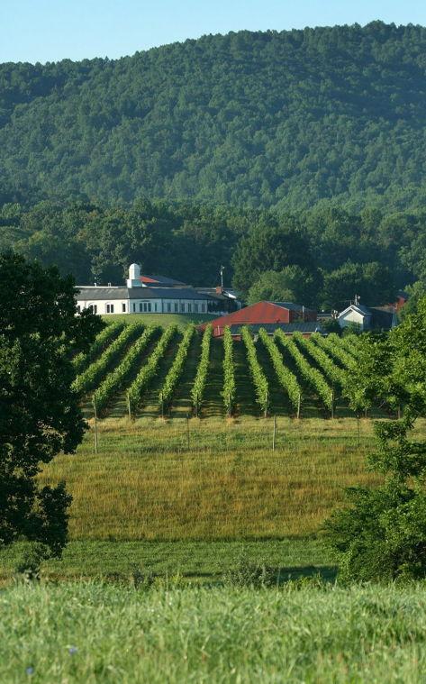 Virginia wine sales reach all-time high
