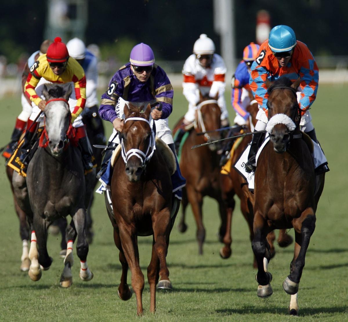 Horse Racing Virginia