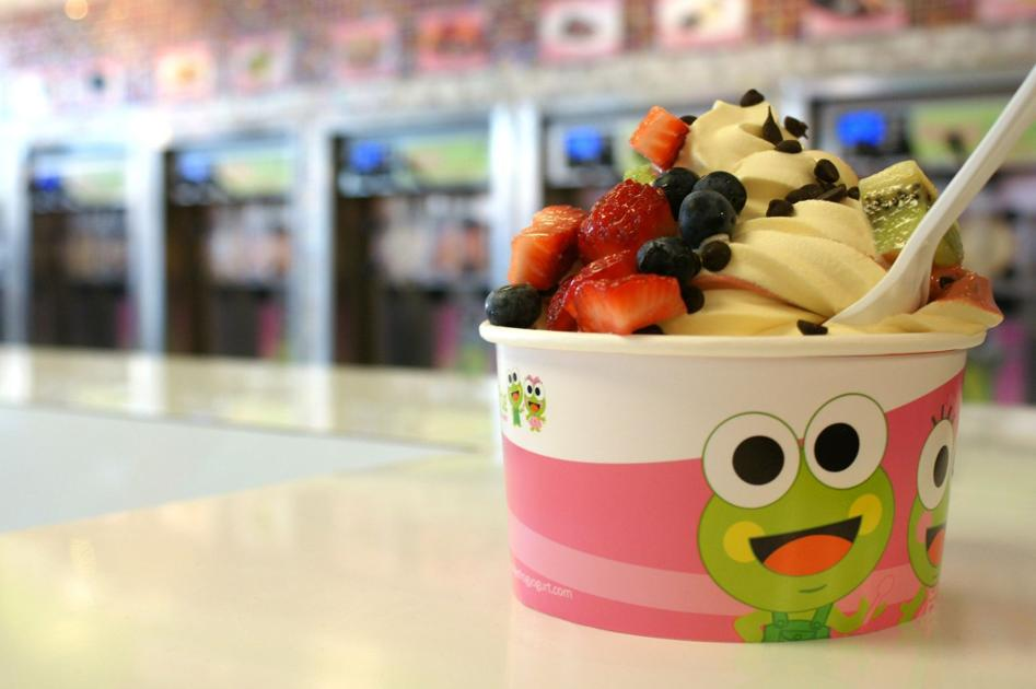 frozen yogurt value chain