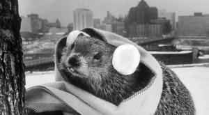 From the Archives: The fascinating and bizarre stories of Groundhog Days in Virginia