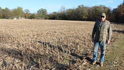 Powhatan farmers negatively impacted by drought