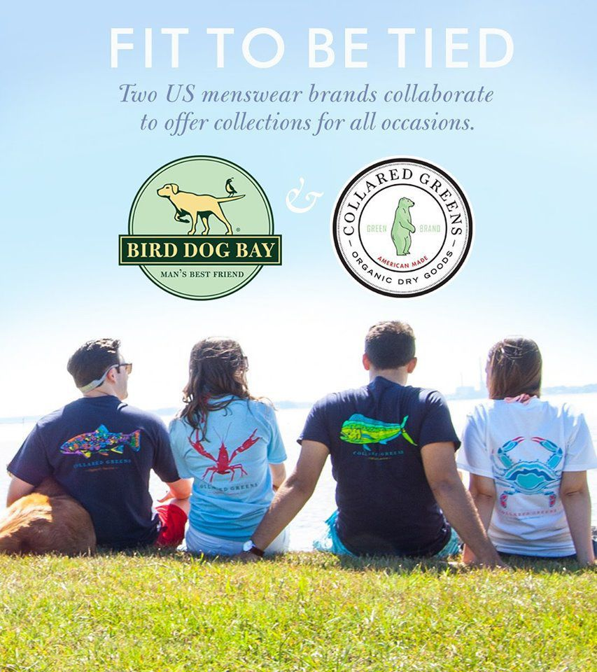 Collared Greens and Bird Dog Bay