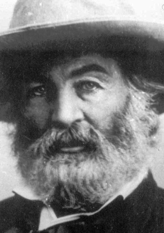 what did walt whitman do during the civil war