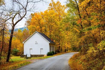 HB - Rural Lane in Fall - Ewart