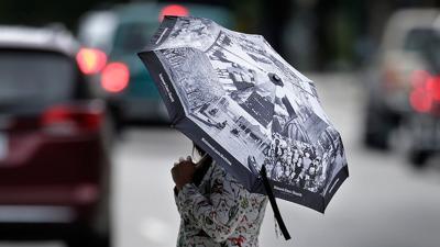 Compact Archive umbrella