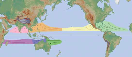 Hurricane tracks around the world
