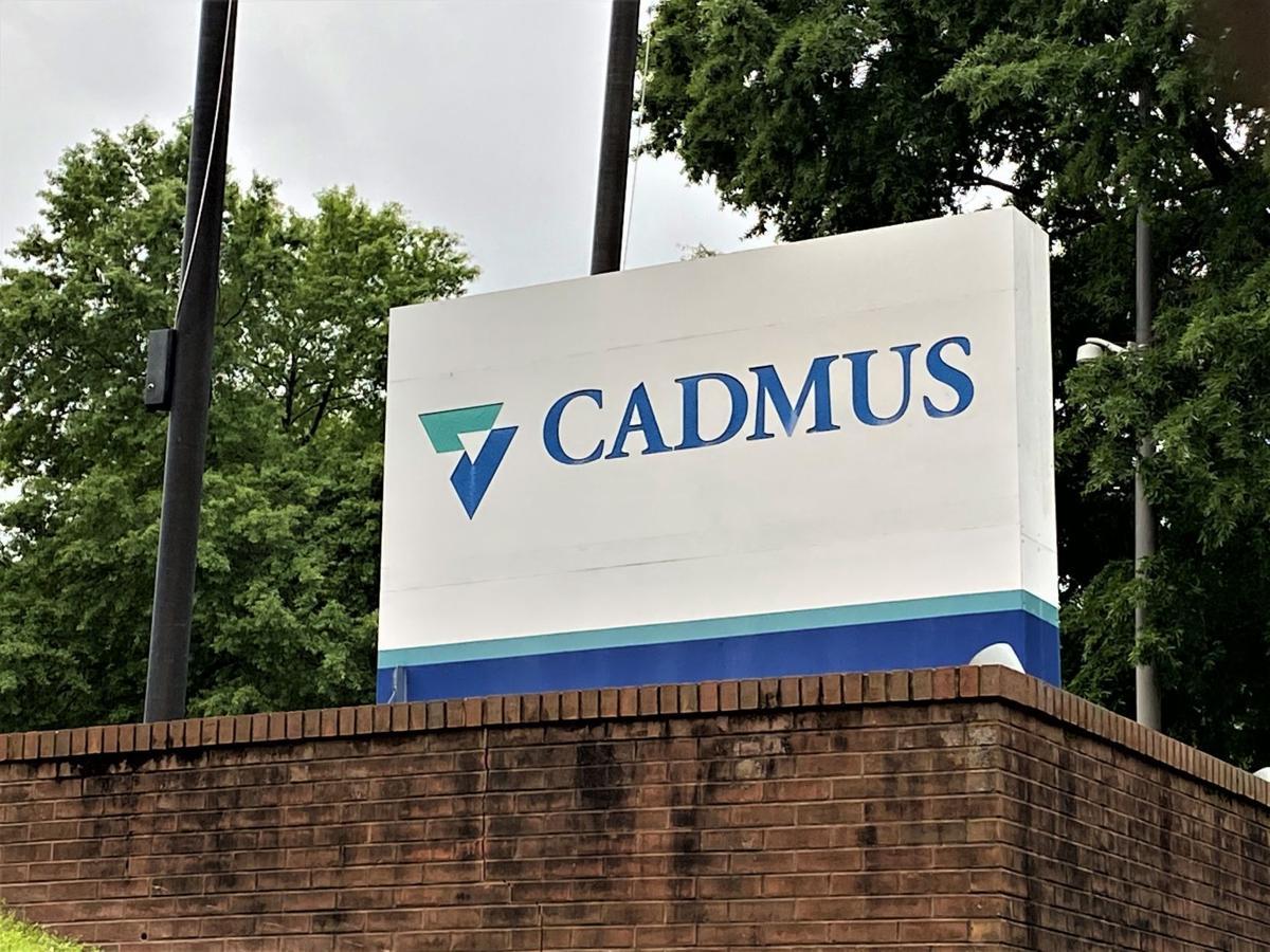 Cadmus plant