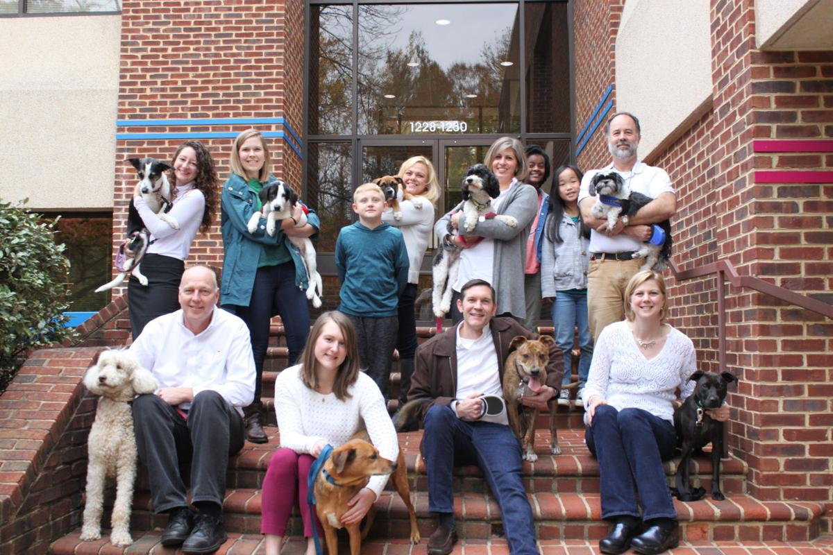 Focused Ultrasound Foundation Adds Veterinarian Program Virginia