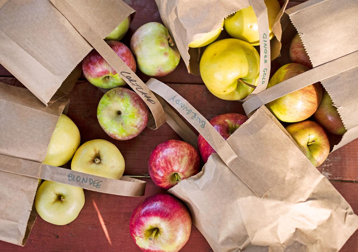 Apples from Wilson's