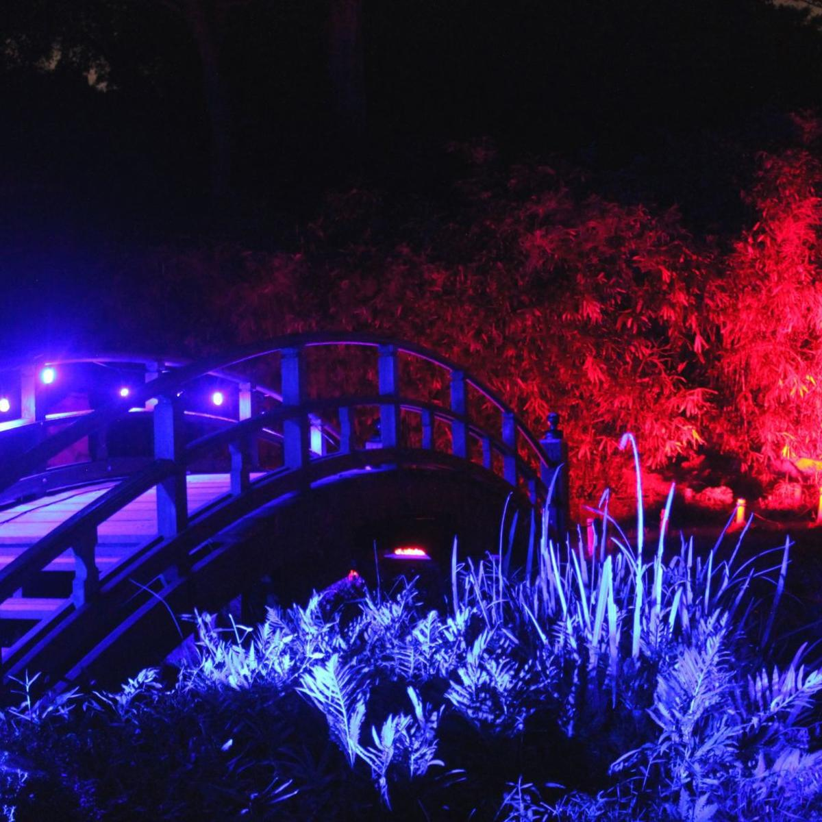 Maymont To Light Up Japanese Garden For Night Time Garden Glow Entertainment Richmond Com