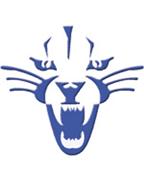 Deep Run logo