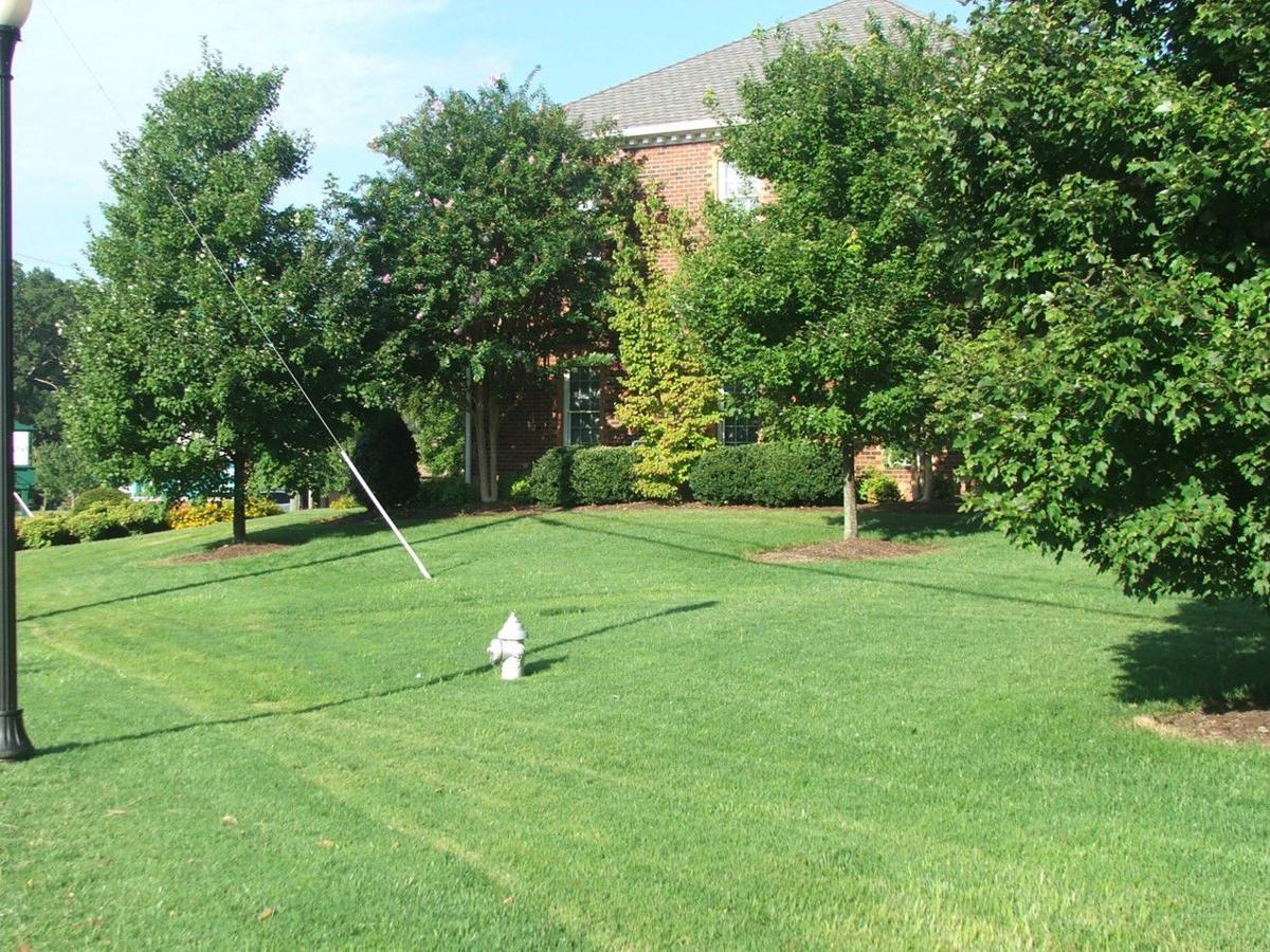 57c5ed4443d2f.image - How Do I Get My Bermuda Grass To Thicken Up