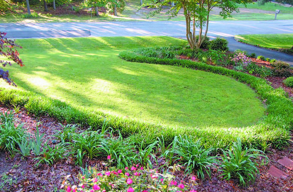 Image Result For Rye Gardening Services