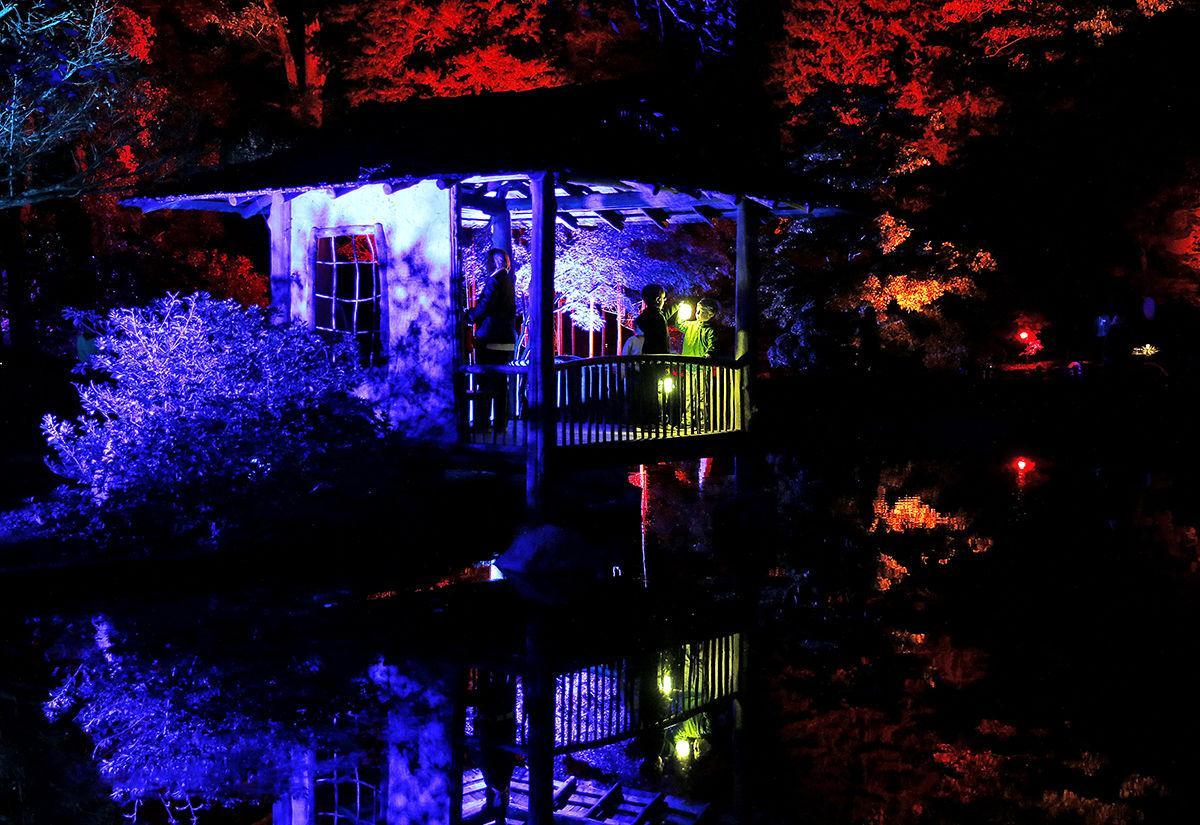 Garden Glow Maymont Video Richmond Com
