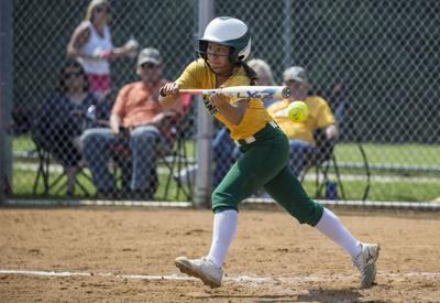 T-D Top 10 for softball: Clover Hill's stellar sophomores