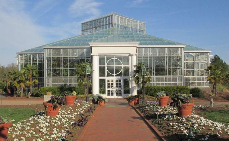 Orchids: Daniel Stowe Botanical Garden Conservatory Display