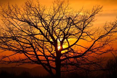 TR - Shenandoah Sunset - Delahoussaye.jpg