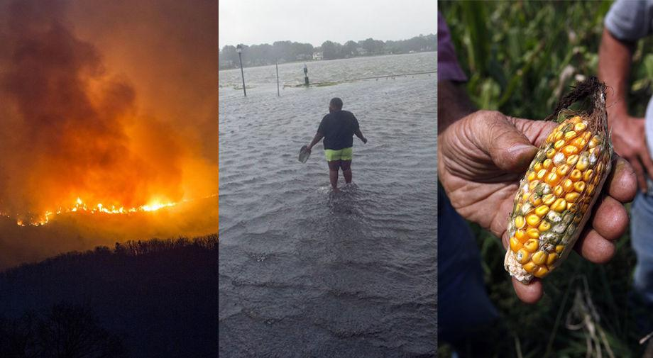 Floods, fires and rising seas: New report details how Virginia will feel climate change