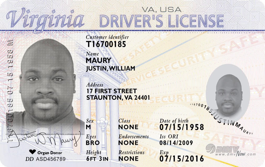 sample drivers license