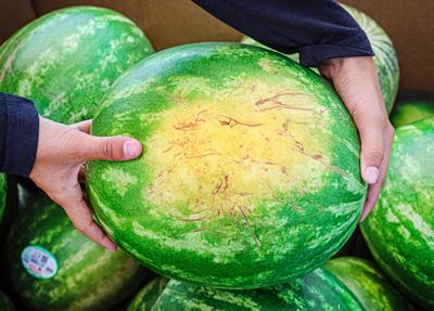Look, lift and turn: How to pick the perfect melon