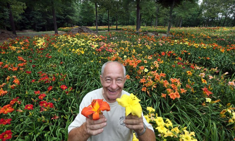 Midlothian Resident To Share His 100 000 Day Lilies With Local