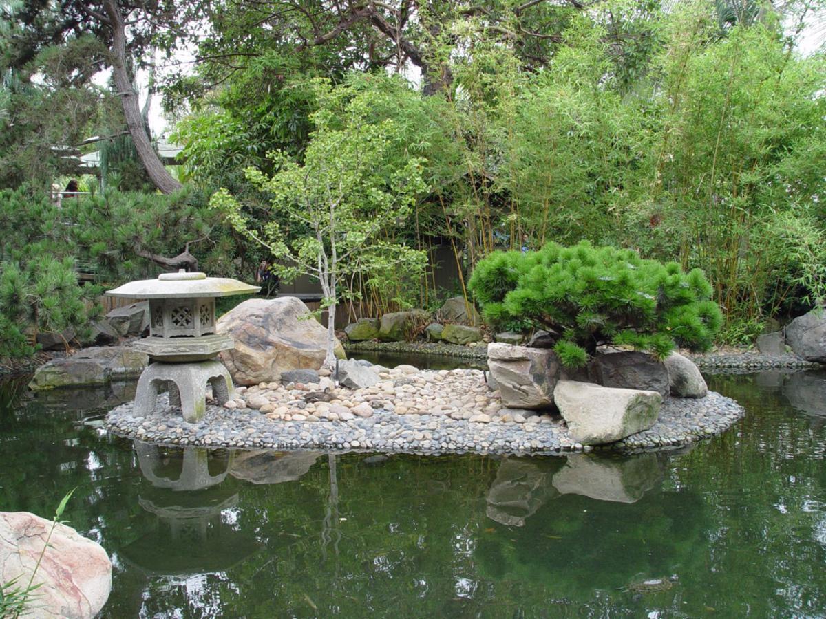 Re Create An Art Form With Backyard Bonsai Richmond Com