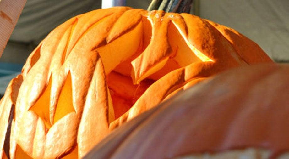 Scott's Addition Pumpkin Festival