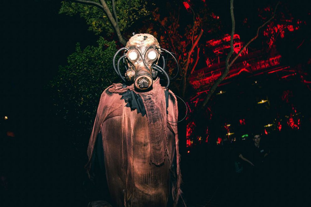 Kings Dominion & Busch Gardens up for USA Today's best haunted ...