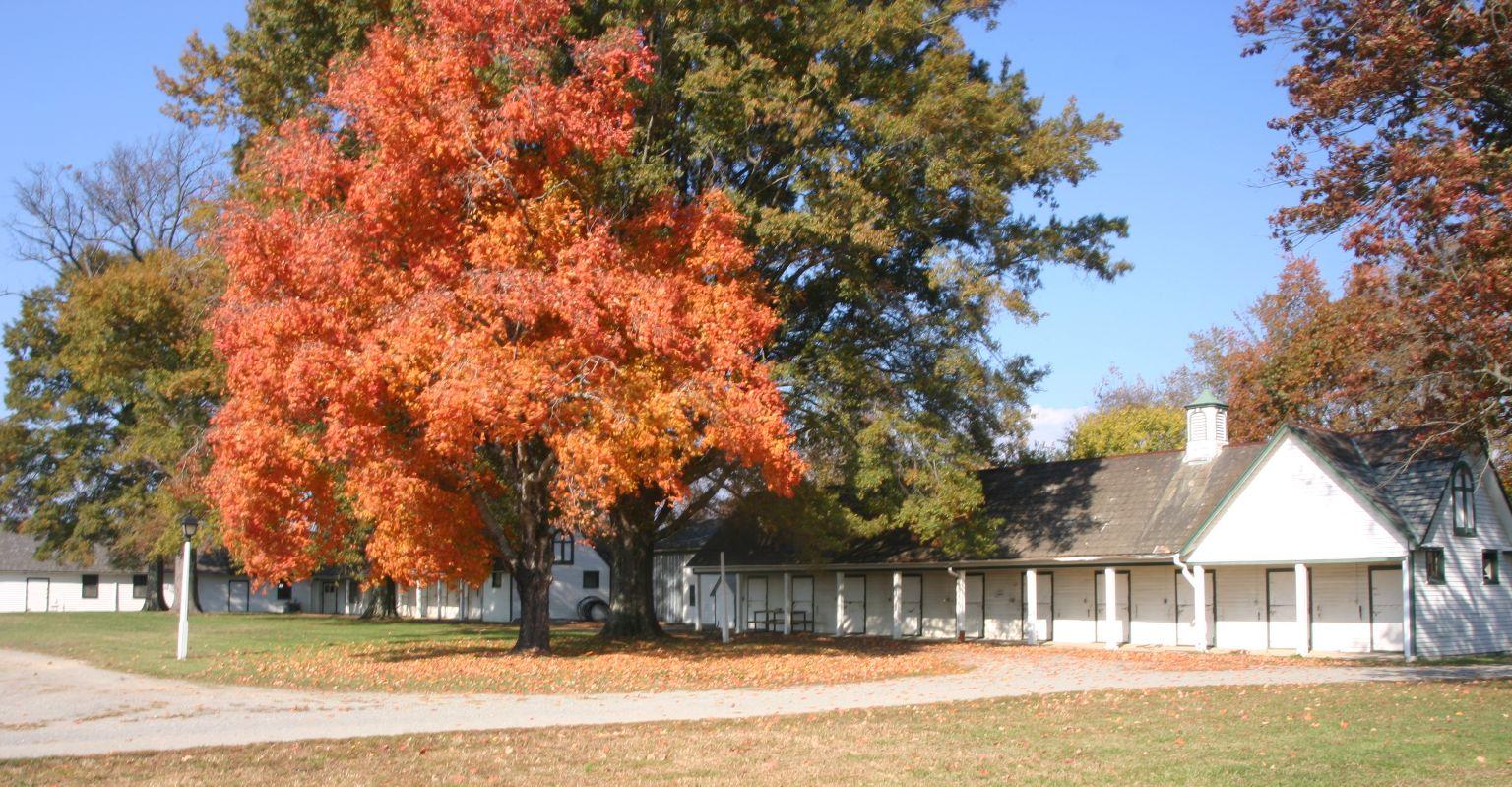 The Meadow Event Park   Fairgrounds   Doswell, VA   richmond.com