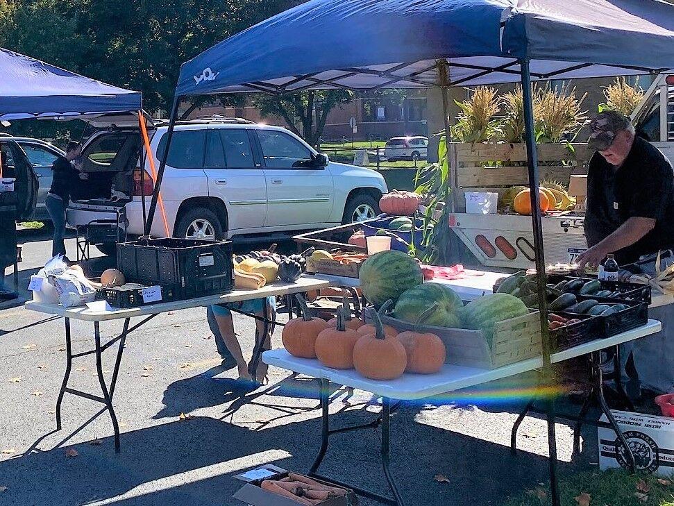 The pumpkins at the Ridgway Farmers Market