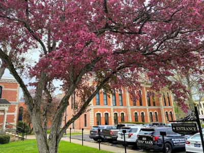 Elk County Courthouse in Bloom