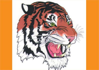 Caudill shines for Tigers at opening track and field meet
