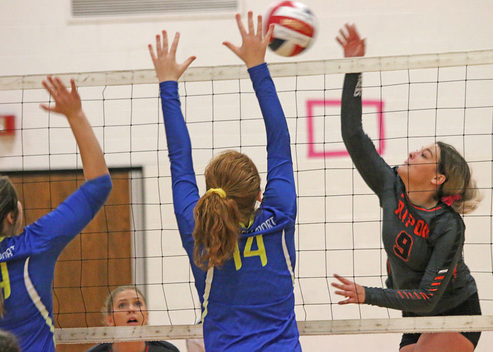 Tigers stung by Hornets in tournament
