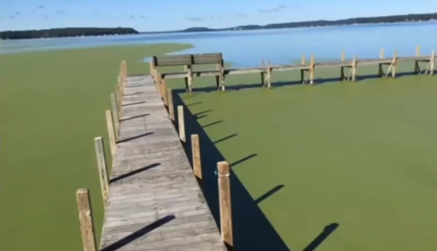 Green Lake's health is declining, more action needed to preserve lake for future generations-1