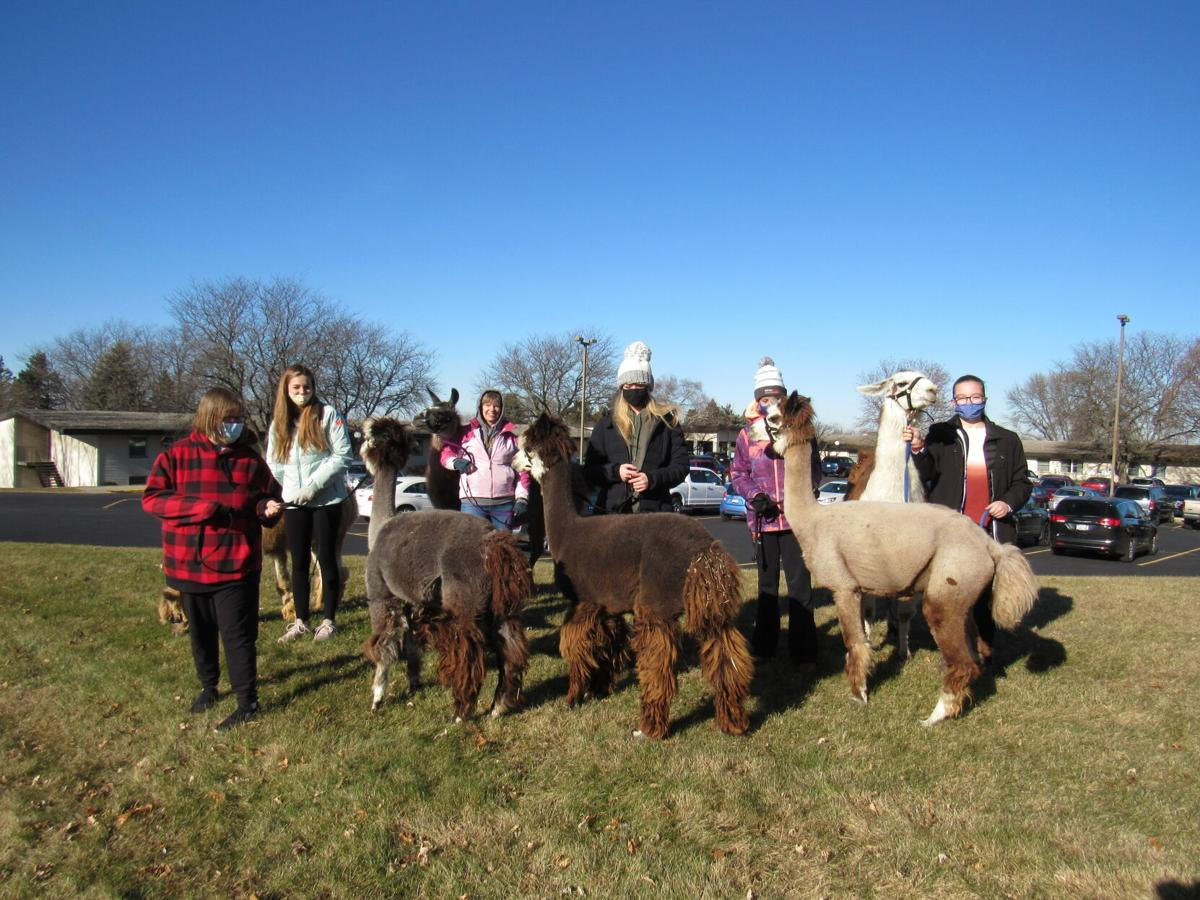 Ripon Girl Scouts partner with Cristo Rey Ranch (7).JPG