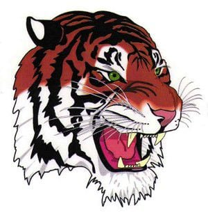 Cheer on Tiger football for another victory!