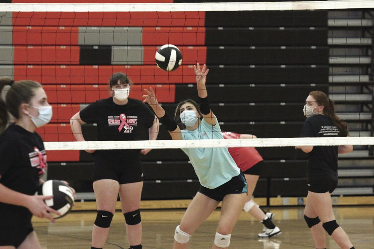 Volleyball Preview-2.tif