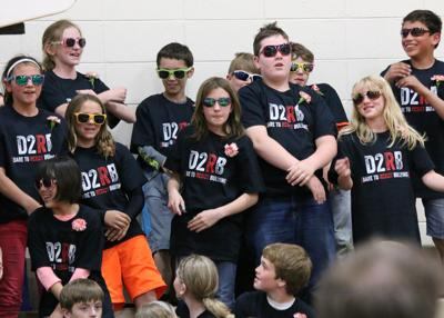 ACE will replace DARE this spring in Ripon