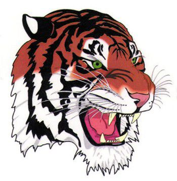 Tiger softball team swept by Mustangs