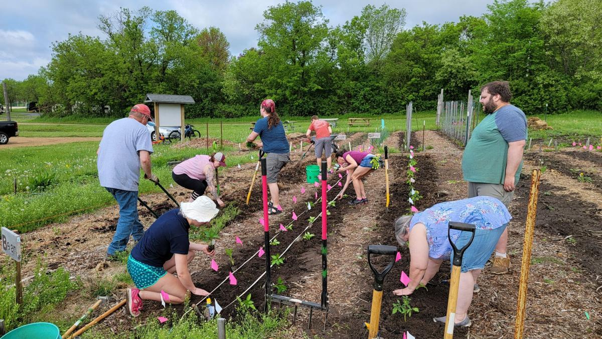 Grow to Share Volunteers