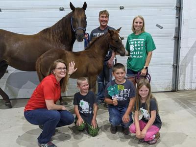4-H student names UW-River Falls horse