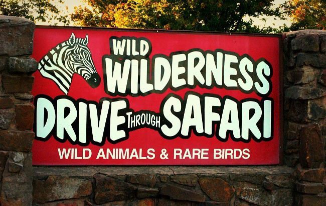 Video from Wild Wilderness Safari goes viral; viewers outraged over incident