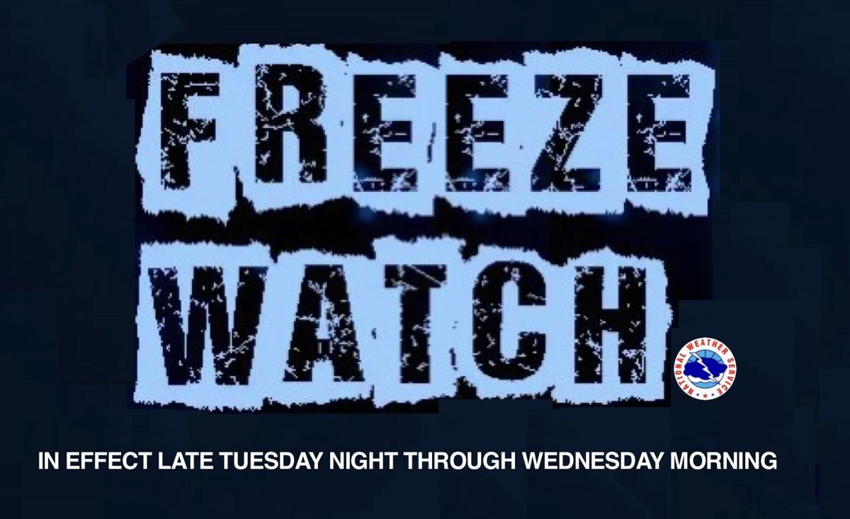 Freeze Watch in effect from late Tuesday night through Wednesday morning