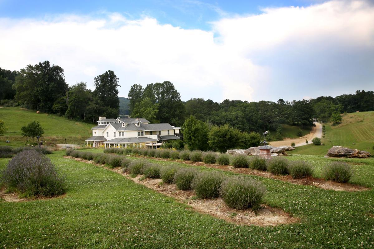 Agritourism a growing trend for Virginia farms | Business | roanoke com