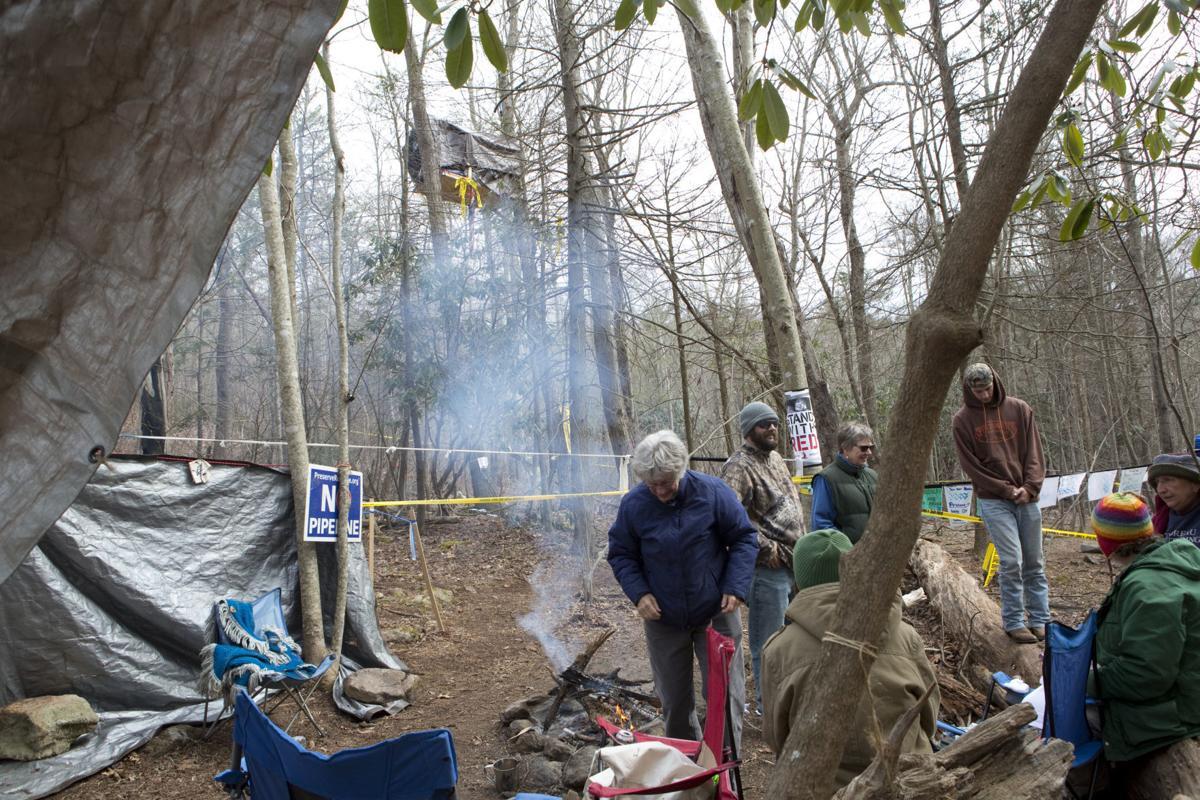 hr treesit 041918 p01